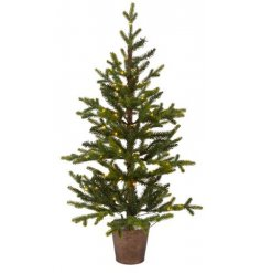 A stunningly simple potted Queensland Mini Tree complete with fitted LED lights, perfect for bringing to your outside sp