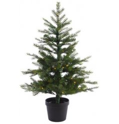 A stunningly simple potted Grandis Tree complete with fitted LED lights, perfect for bringing to your outside spaces