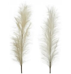 Perfect for setting within statement vases in your home, a mix of natural toned artificial pampas plumes