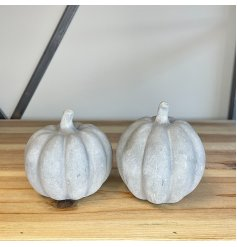 A mix of charmingly simple cement based pumpkins with a rustic decal to each