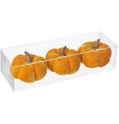 A set of 3 bright orange toned velvet pumpkins in a clear packaging, suitable for Christmas and Halloween