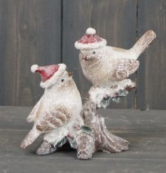 A sweetly posed duo of perched birds on a festive branch