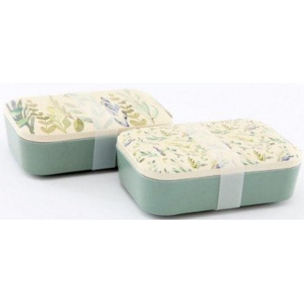 Green Leaf Printed Lunch Boxes, 18cm