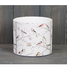 A small and simple set plant pot featuring a colourful bird print around it