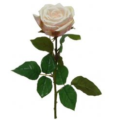 A beautiful rose, with real feel petals. This will look stunning alone or paired with grasses and flowers.