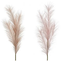 An assortment of 2 on trend pampas grass stems in beautiful boho cream and pink hues.