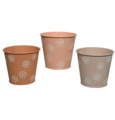 3 Pastel Coloured round Planters With Flower Print Design