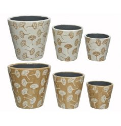 An Assortment of Two Planters in Dandelion Design, in Set of 3, 18cm