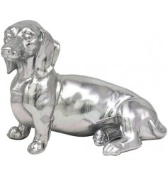 Adorable Sitting Ornamental Dachshund with a vibrant silver colour