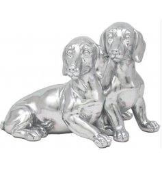 Cuddling pups to sweeten up your living room or kitchen