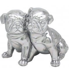 Cuddling pugs to sweeten up your living room or kitchen