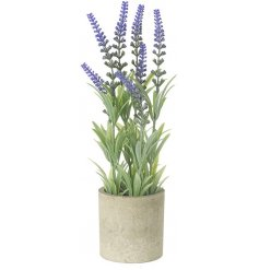 A tall faux lavender plant in stoneware effect planter, a lovely natural home accessory.