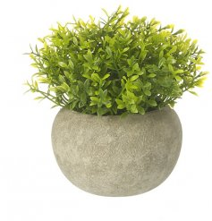 A faux green house plant in a simple house plant. Perfectly sized to compliment any area of your home.