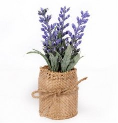 A Lavender Plant in a Neutral Hessian Bag