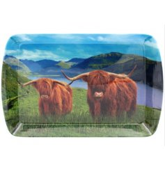 A Charming Small Serving Tray in Highland Cow Design
